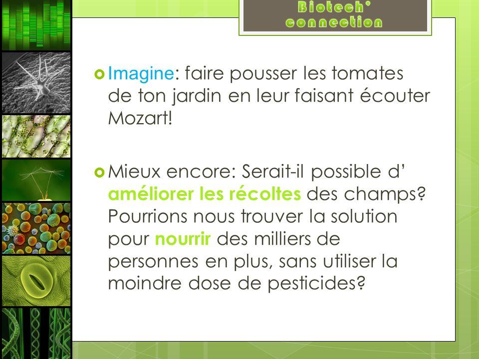 Imagine : faire pousser les tomates de ton jardin en leur faisant écouter Mozart! Mieux encore: Serait-il possible d améliorer les récoltes des champs