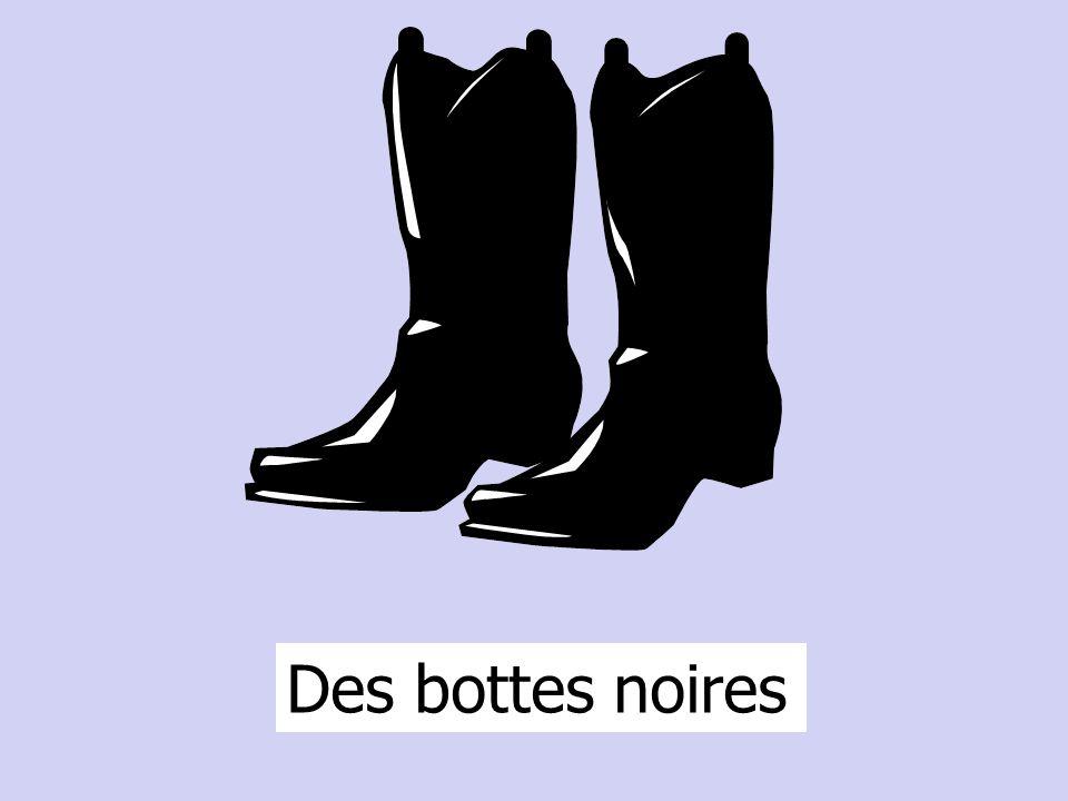 Des bottes noires