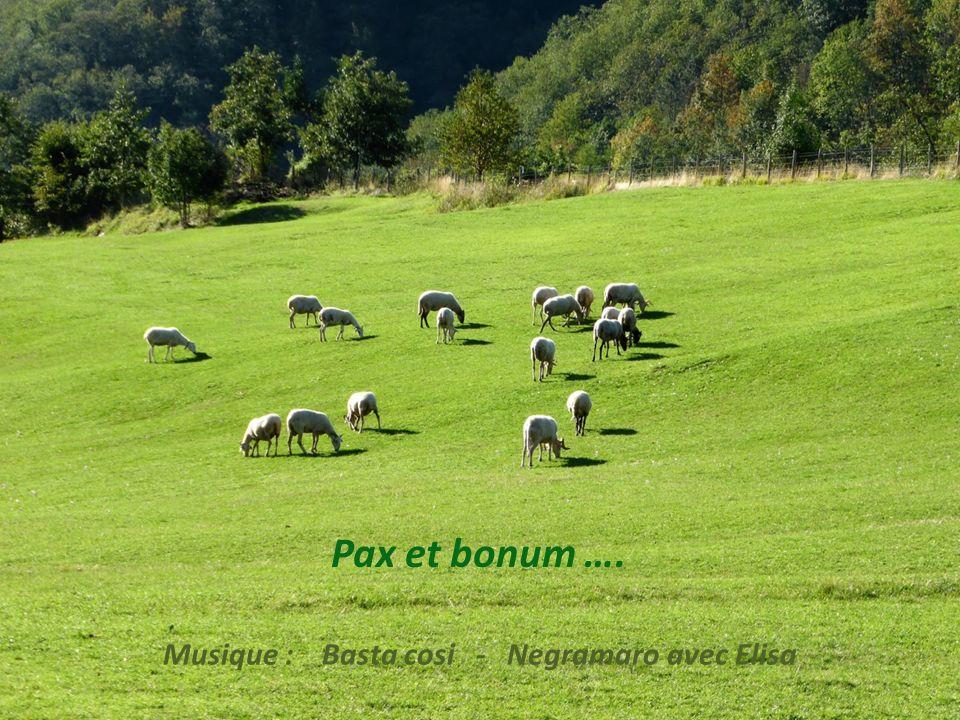 20 sept 2013 – Le retour du grand beau temps. Beaucoup plus confortable pour nous. – Foce di Adelano - Passo Alpicella – 25 km, 7h45 – P 1030670a
