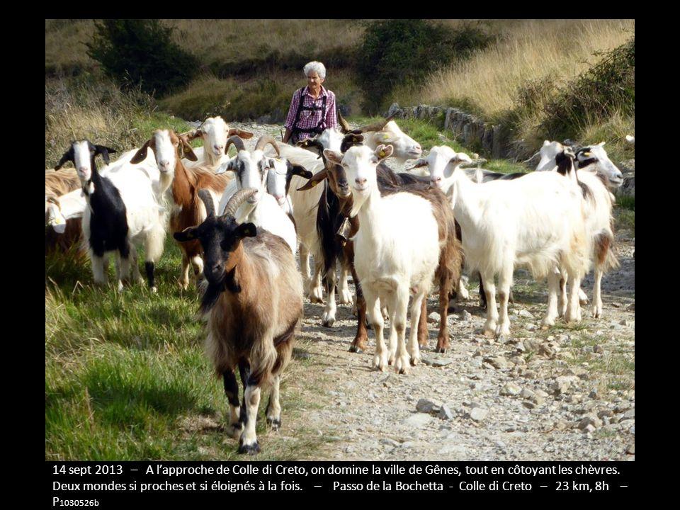 Semaine 10, du Passo de la Bochetta au Passo Alpicella