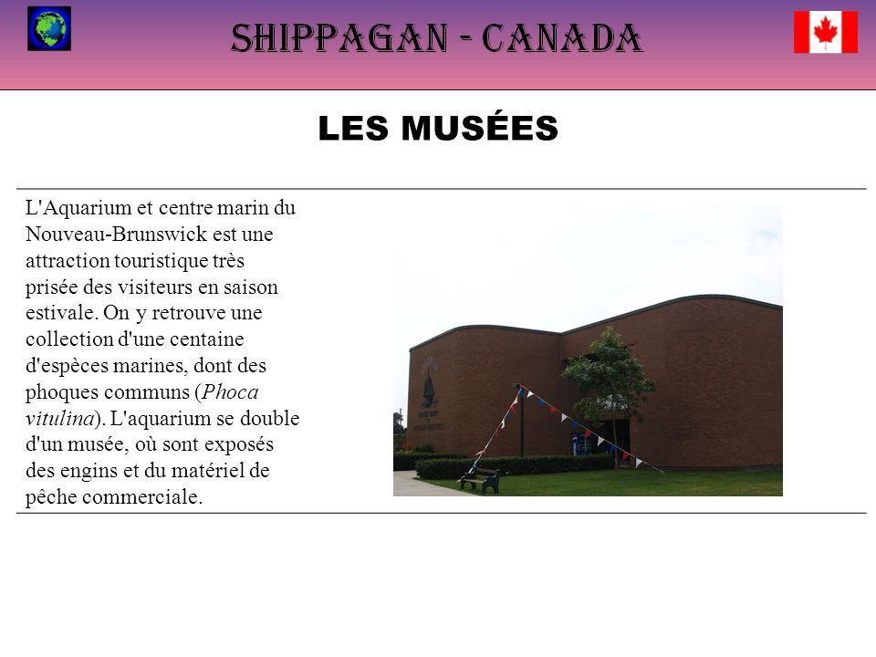 LES MUSÉES L'Aquarium et centre marin du Nouveau-Brunswick est une attraction touristique très prisée des visiteurs en saison estivale. On y retrouve