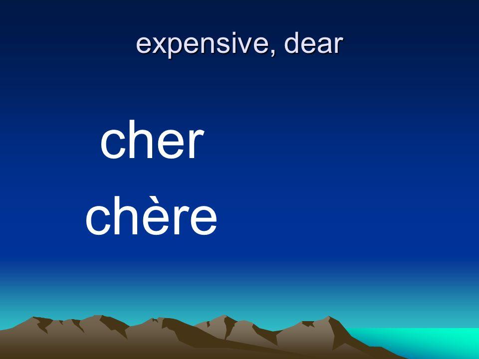 expensive, dear cher chère