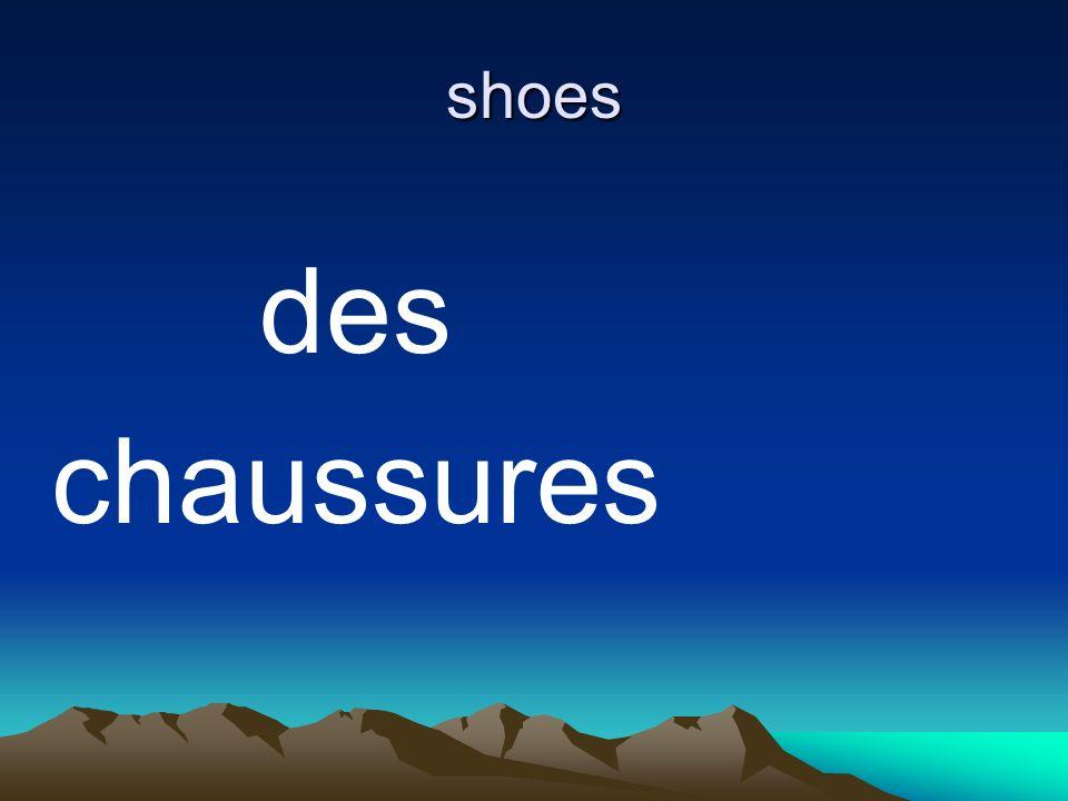 shoes des chaussures