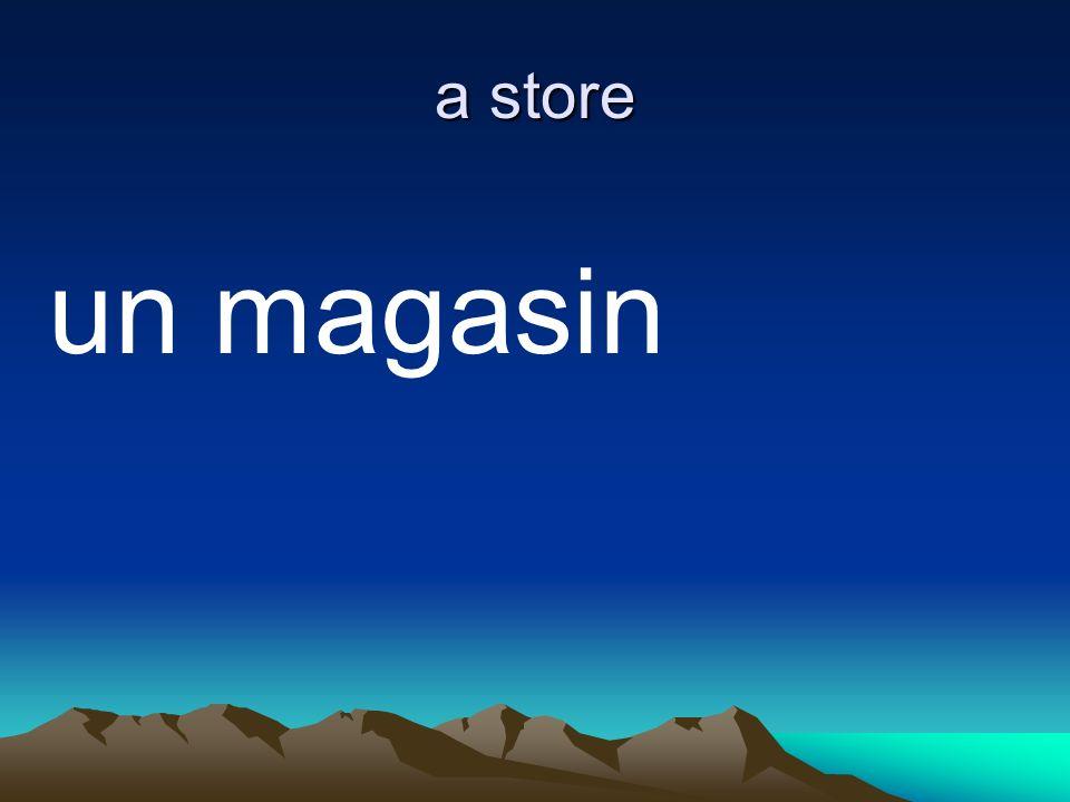 a store un magasin