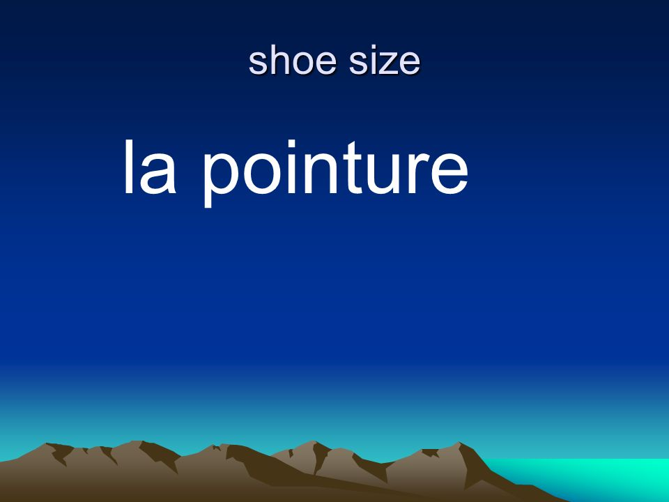 shoe size la pointure