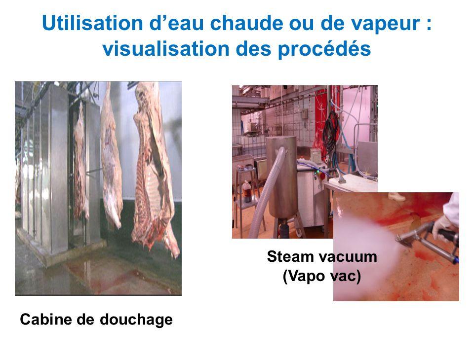 Utilisation deau chaude ou de vapeur : visualisation des procédés Cabine de douchage Steam vacuum (Vapo vac)