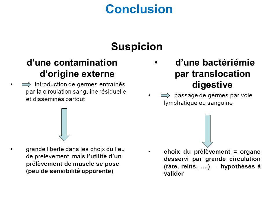 Conclusion dune contamination dorigine externe introduction de germes entraînés par la circulation sanguine résiduelle et disséminés partout grande li