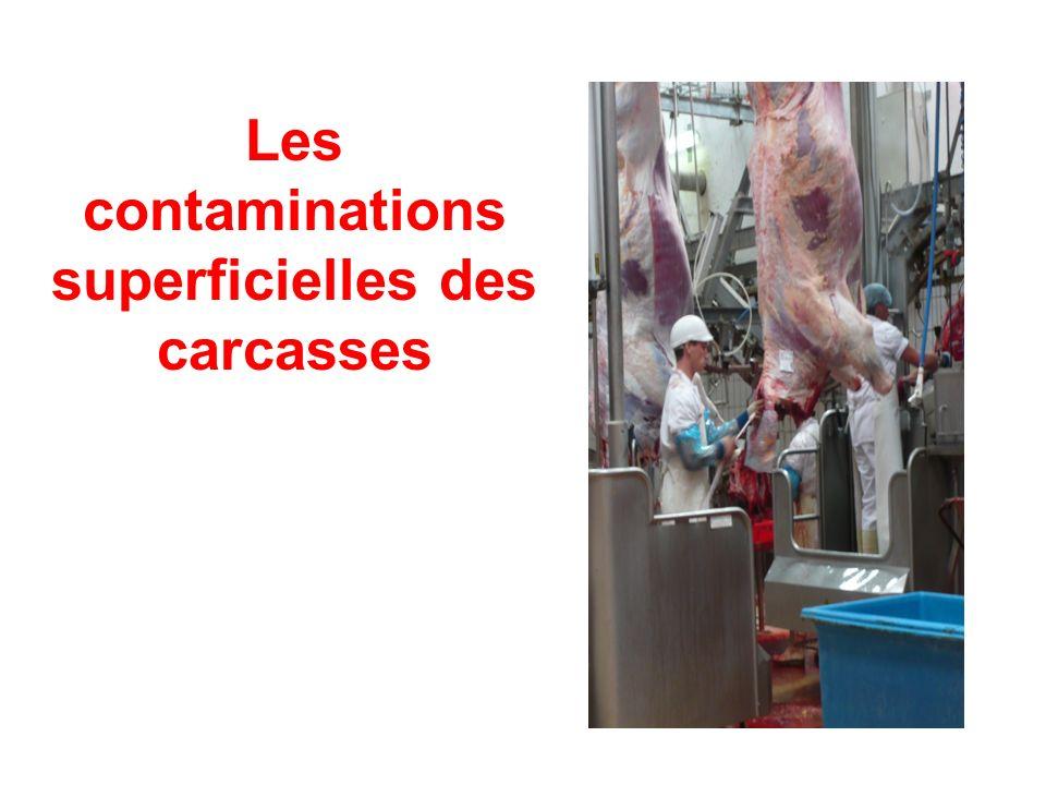Question 1C Evolution de la contamination microbienne en surface de carcasses maintenues dans le hall dabattage Coordonnateur : Laurent Guillier