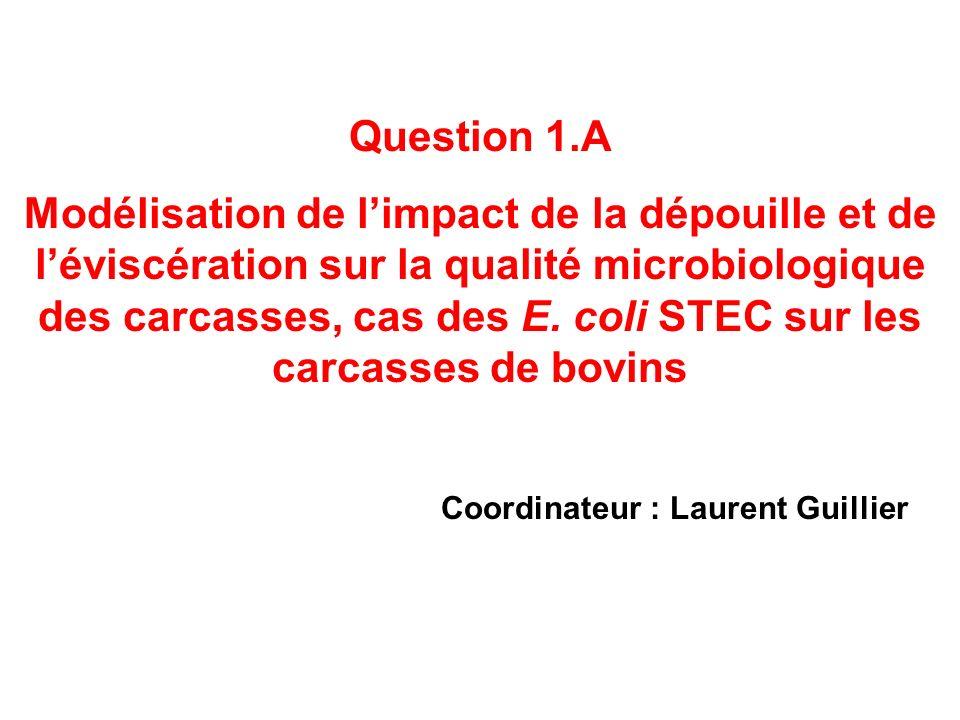 Question 1.A Modélisation de limpact de la dépouille et de léviscération sur la qualité microbiologique des carcasses, cas des E. coli STEC sur les ca