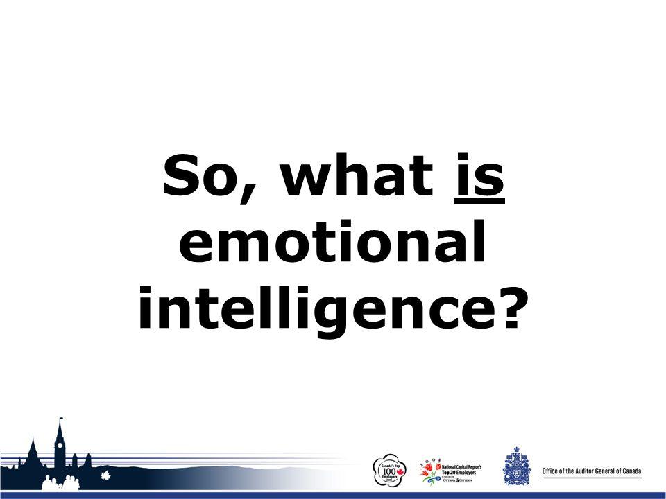 Office of the Auditor General of Canada Emotional Intelligence Workshop Financial Management Institute of Canada / Institut de la gestion financière du Canada 24 November 2008