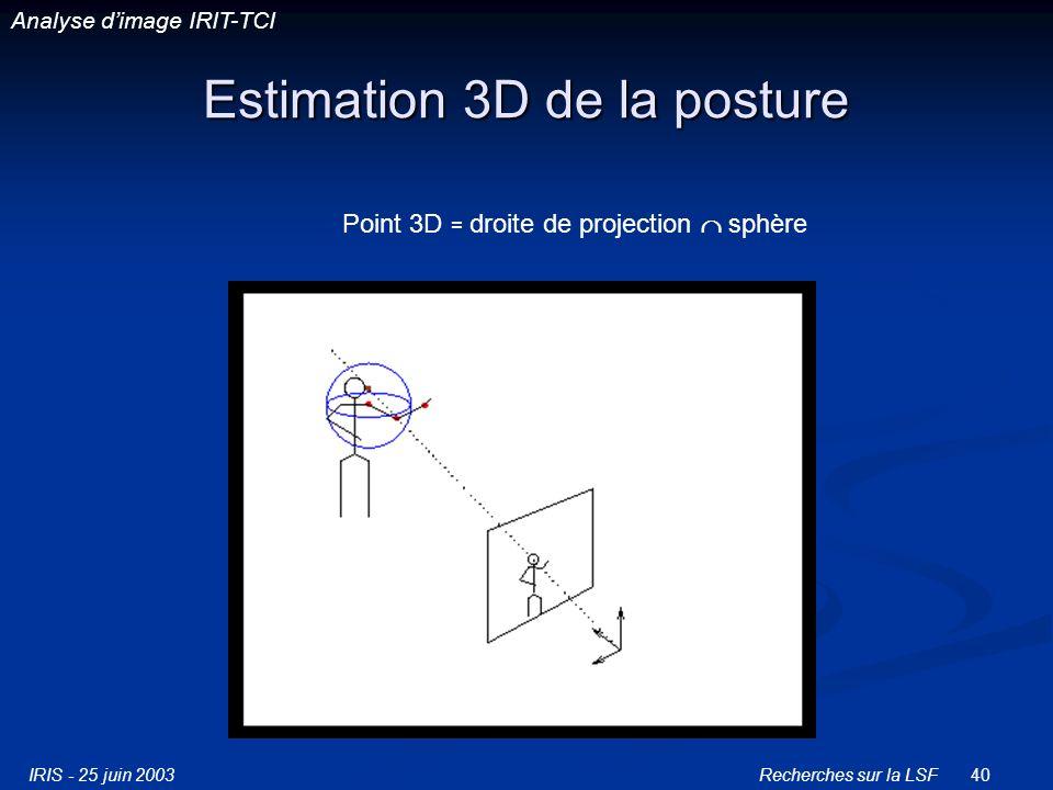 IRIS - 25 juin 2003Recherches sur la LSF40 Estimation 3D de la posture Point 3D = droite de projection sphère Analyse dimage IRIT-TCI