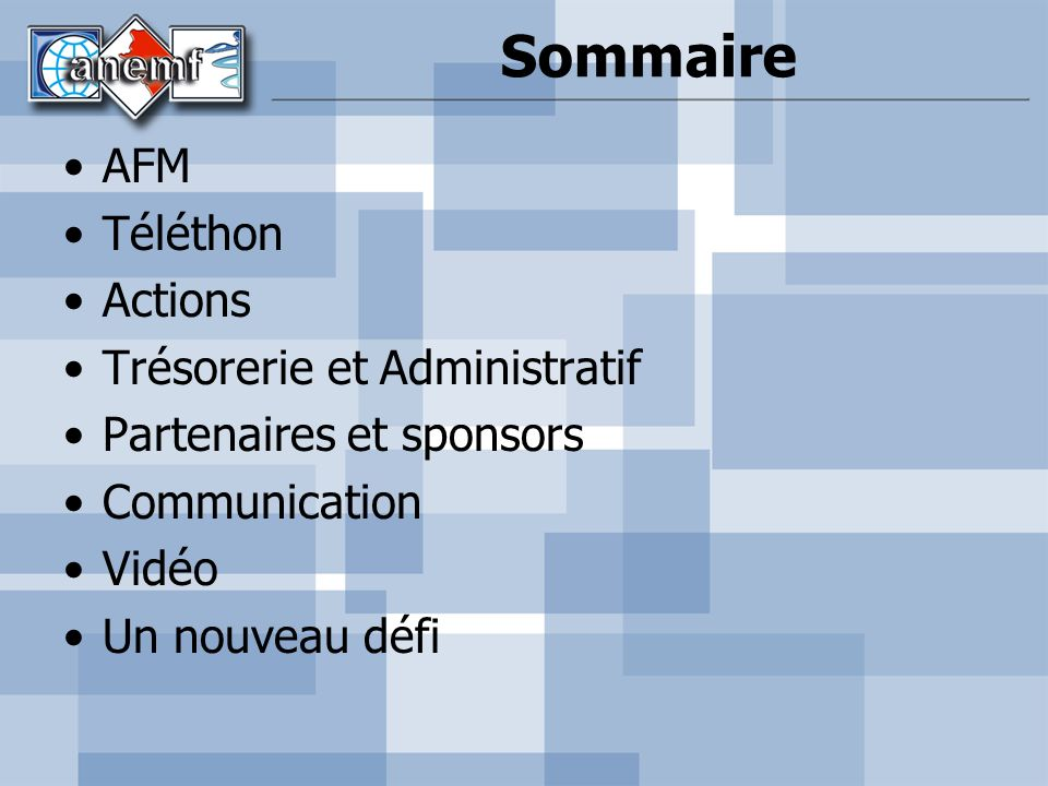 Sommaire AFM Téléthon Actions Trésorerie et Administratif Partenaires et sponsors Communication Vidéo Un nouveau défi