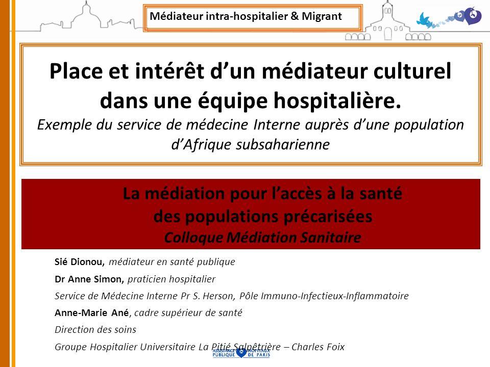 Place et intérêt dun médiateur culturel dans une équipe hospitalière. Exemple du service de médecine Interne auprès dune population dAfrique subsahari