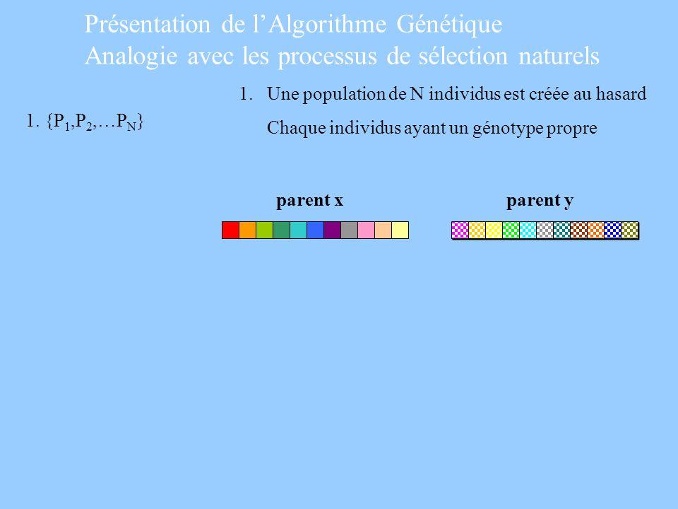 1. Une population de N individus est créée au hasard Chaque individus ayant un génotype propre parent xparent y 1. {P 1,P 2,…P N } Présentation de lAl