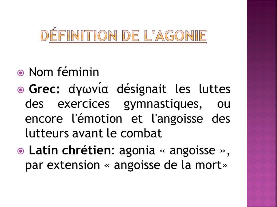 Nom féminin Grec: α ̓ γωνια désignait les luttes des exercices gymnastiques, ou encore l'émotion et l'angoisse des lutteurs avant le combat Latin chré