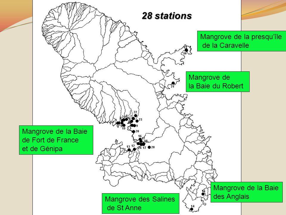 Poly-contamination des sols de mangrove 28 stations Mangrove de la presquîle de la Caravelle Mangrove de la Baie du Robert Mangrove des Salines de St