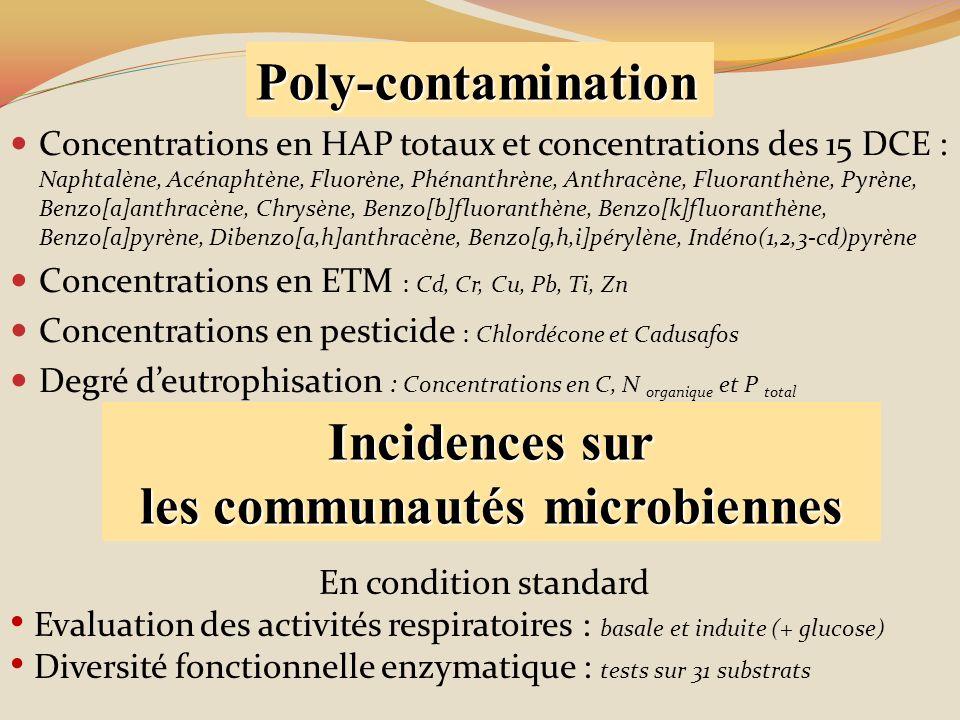 Concentrations en HAP totaux et concentrations des 15 DCE : Naphtalène, Acénaphtène, Fluorène, Phénanthrène, Anthracène, Fluoranthène, Pyrène, Benzo[a