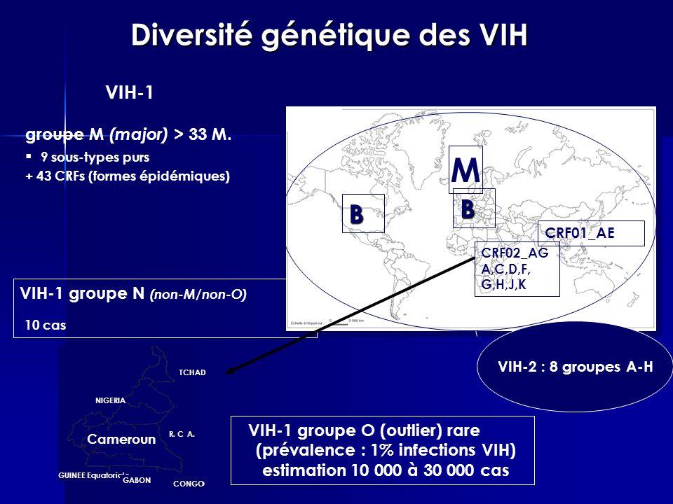 groupe M (major) > 33 M. 9 sous-types purs + 43 CRFs (formes épidémiques) Diversité génétique des VIH - VIH-2 : 8 groupes A-H VIH-1 groupe N (non-M/no