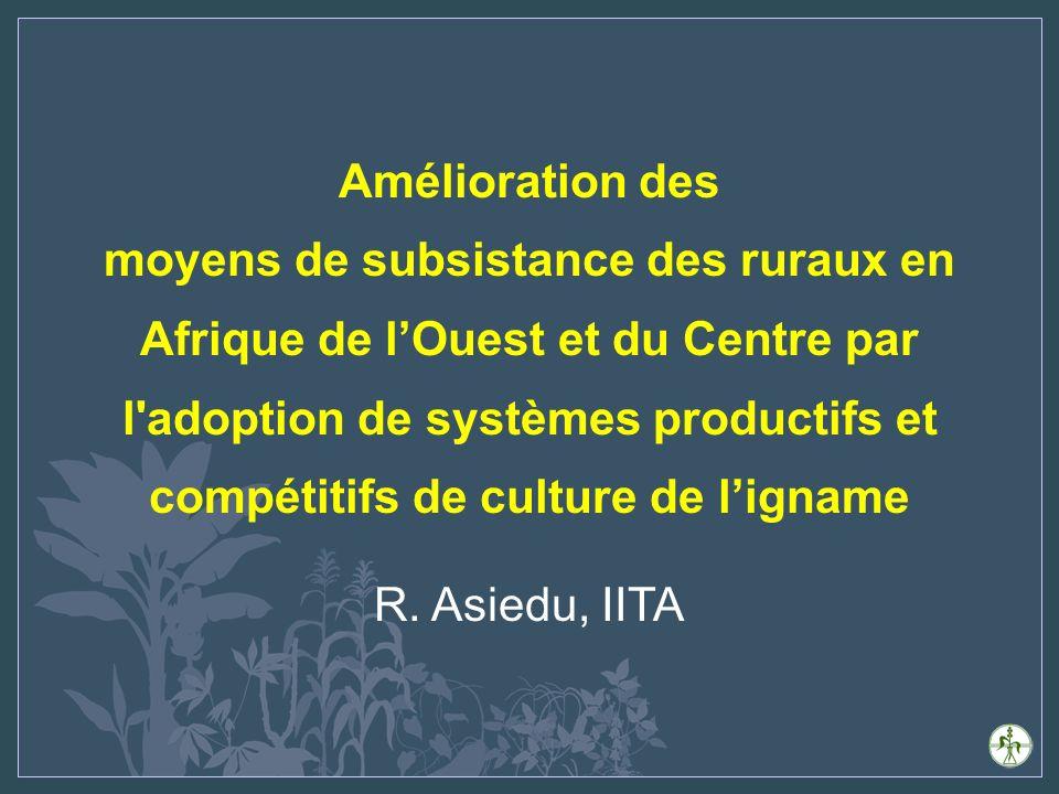 Amélioration des moyens de subsistance des ruraux en Afrique de lOuest et du Centre par l adoption de systèmes productifs et compétitifs de culture de ligname R.