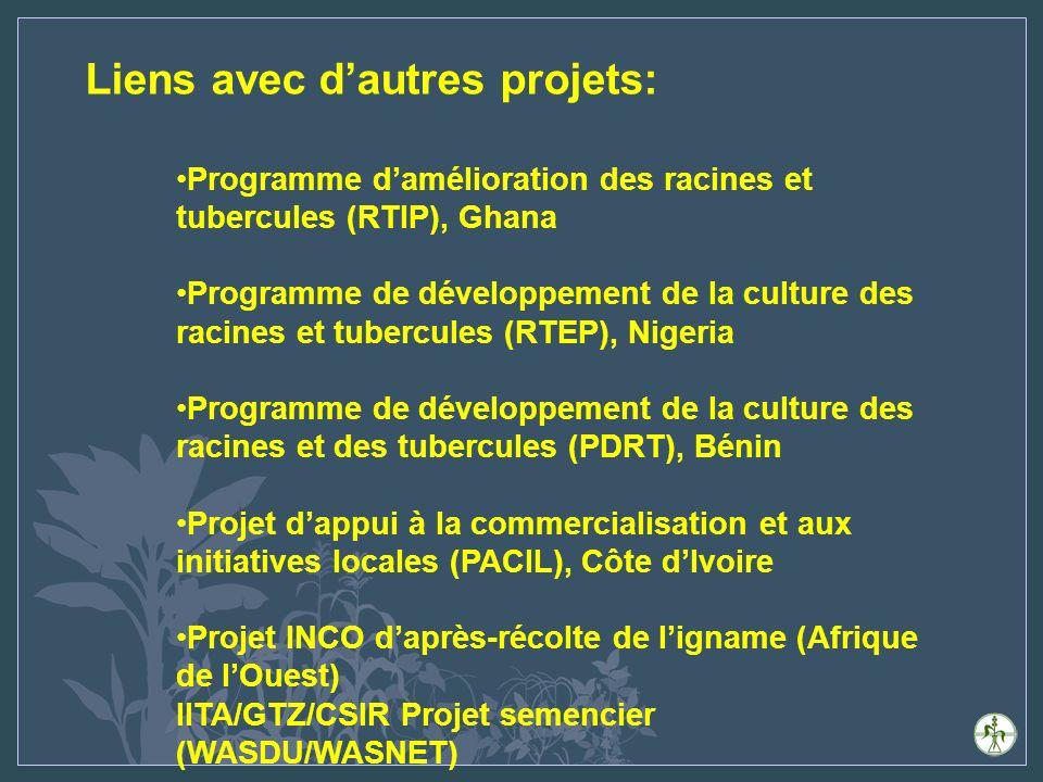 Liens avec dautres projets: Programme damélioration des racines et tubercules (RTIP), Ghana Programme de développement de la culture des racines et tubercules (RTEP), Nigeria Programme de développement de la culture des racines et des tubercules (PDRT), Bénin Projet dappui à la commercialisation et aux initiatives locales (PACIL), Côte dIvoire Projet INCO daprès-récolte de ligname (Afrique de lOuest) IITA/GTZ/CSIR Projet semencier (WASDU/WASNET)