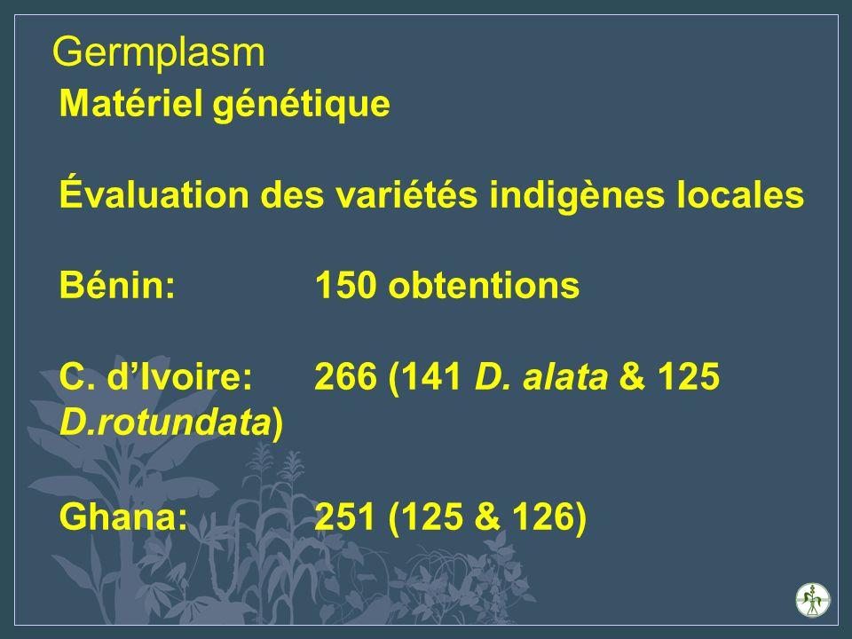 Germplasm Matériel génétique Évaluation des variétés indigènes locales Bénin: 150 obtentions C.
