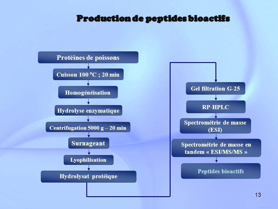 13 Cuisson 100 °C ; 20 min Protéines de poissons Homogénéisation Hydrolyse enzymatique Lyophilisation Hydrolysat protéique Surnageant Centrifugation 5