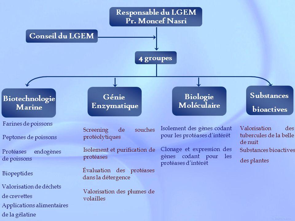 Responsable du LGEM Pr. Moncef Nasri Conseil du LGEM 4 groupes Génie Enzymatique Screening de souches protéolytiques Isolement et purification de prot