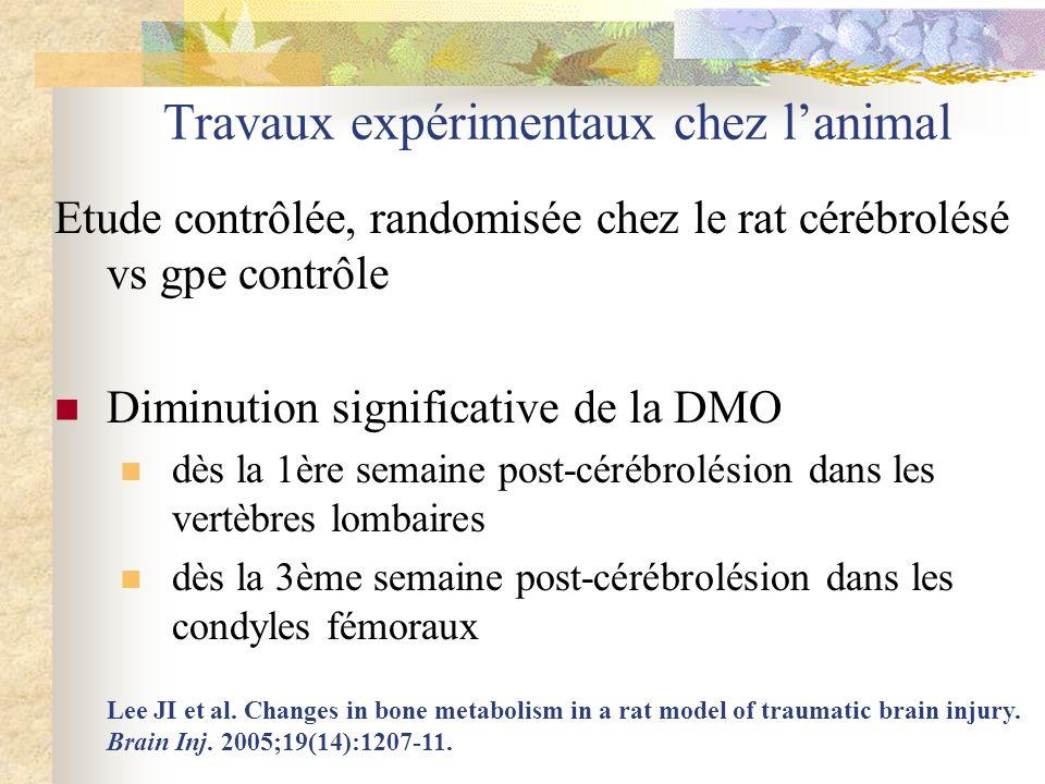 Travaux expérimentaux chez lanimal Etude contrôlée, randomisée chez le rat cérébrolésé vs gpe contrôle Diminution significative de la DMO dès la 1ère