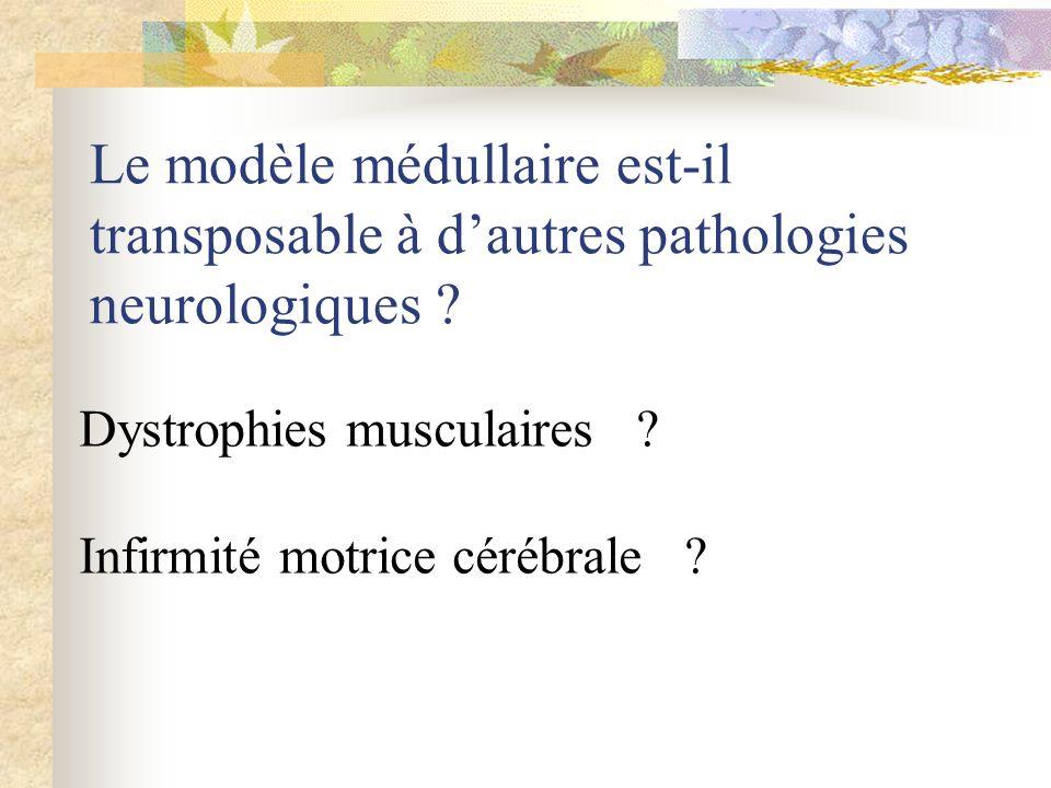 Le modèle médullaire est-il transposable à dautres pathologies neurologiques ? Dystrophies musculaires ? Infirmité motrice cérébrale ?