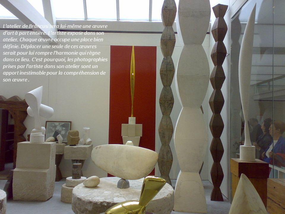 Deux musées rassemblent des collections importantes de Brâncusi : le musée d'art moderne de New York le musée national d'art de Bucarest. On peut admi