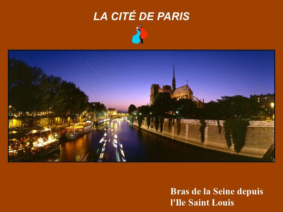 Notre-Dame de Paris depuis le Pont de l'Archevéché LA CITÉ DE PARIS