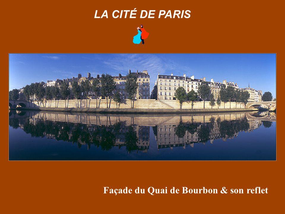 Façade du Quai de Bourbon & son reflet LA CITÉ DE PARIS