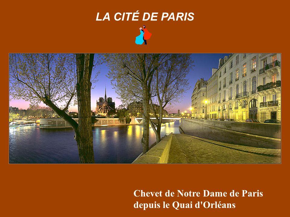Chevet de Notre Dame de Paris depuis le Quai d Orléans LA CITÉ DE PARIS