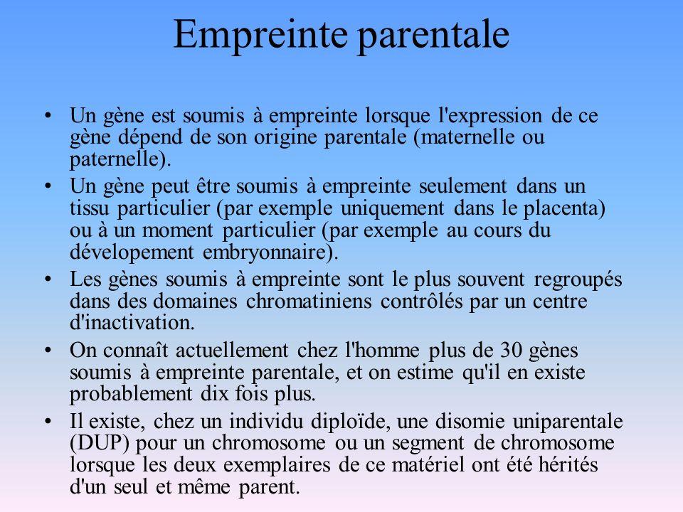 Empreinte parentale Un gène est soumis à empreinte lorsque l'expression de ce gène dépend de son origine parentale (maternelle ou paternelle). Un gène