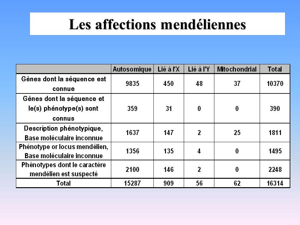 Exemple de maladies autosomiques récessives Albinisme (plusieurs gènes) Mucoviscidose (CFTR) Drépanocytose (gène globine) Thalassémies (gènes ou globines) Hémochromatose (HFE) Maladie de Tay-Sachs (TSD=HexA) Maladie de Gaucher (glucocérébrosidase) Maladie de Wilson (ATP7B) Amyotrophie spinale progressive (SMN1, SMN2) Ataxie de Friedreich (FRDA1 = gène de la frataxine) La plupart des maladies métaboliques dues à des anomalies enzymatiques, ex :phénylcétonurie (PAH) * *