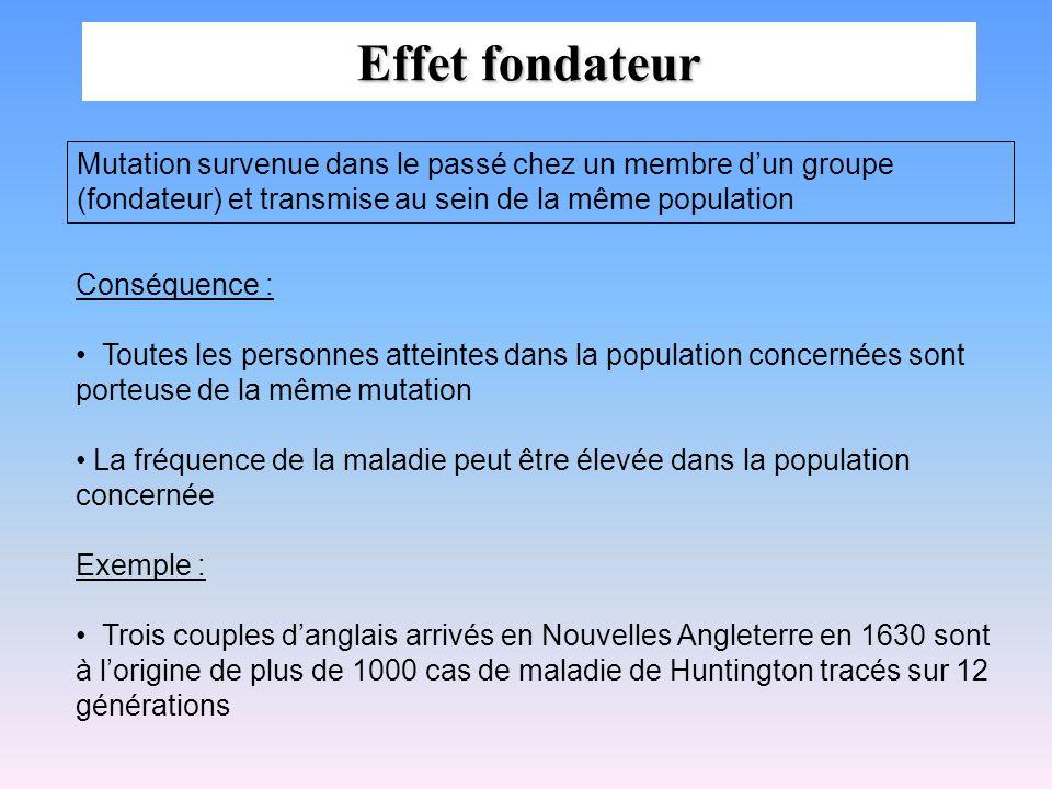 Effet fondateur Mutation survenue dans le passé chez un membre dun groupe (fondateur) et transmise au sein de la même population Conséquence : Toutes