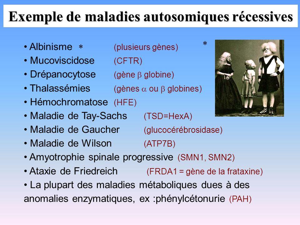 Exemple de maladies autosomiques récessives Albinisme (plusieurs gènes) Mucoviscidose (CFTR) Drépanocytose (gène globine) Thalassémies (gènes ou globi