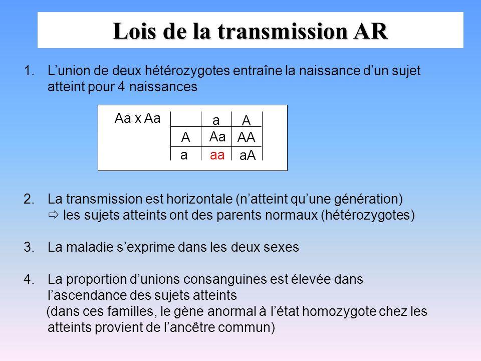 Lois de la transmission AR 1.Lunion de deux hétérozygotes entraîne la naissance dun sujet atteint pour 4 naissances 2.La transmission est horizontale