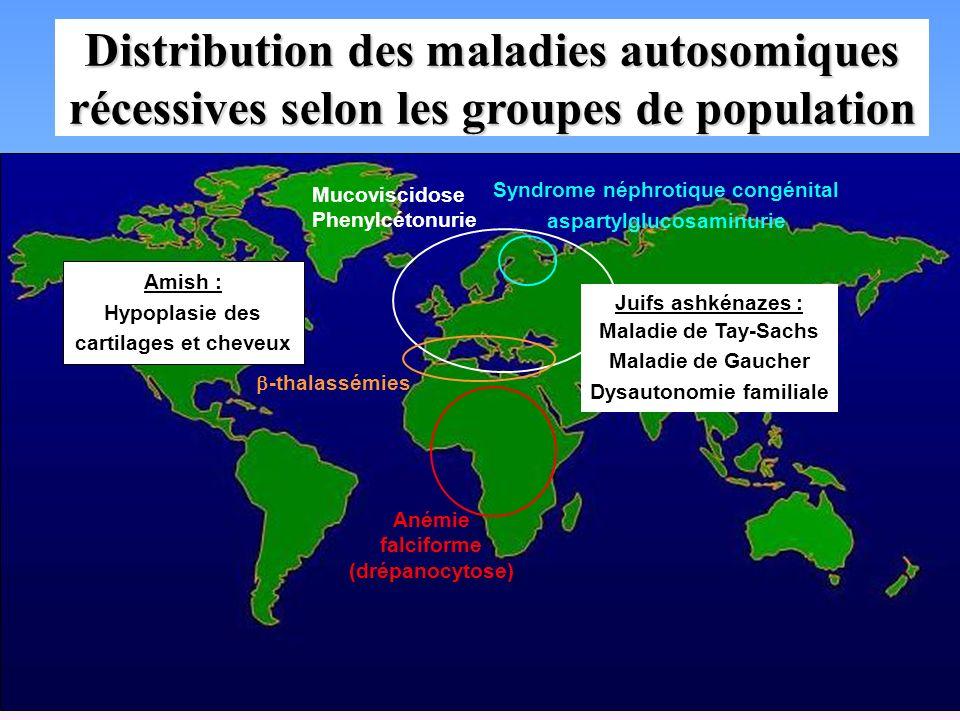 Distribution des maladies autosomiques récessives selon les groupes de population Anémie falciforme (drépanocytose) Mucoviscidose Phenylcétonurie -tha