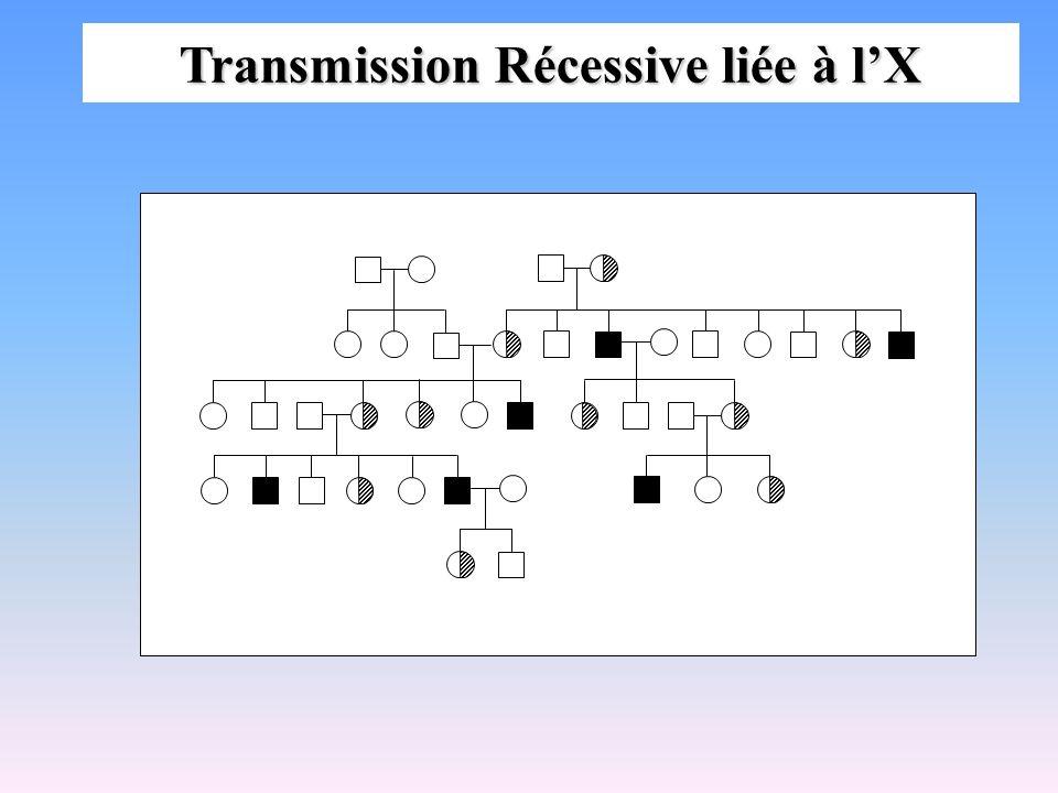 Transmission Récessive liée à lX