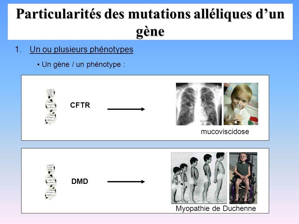 Particularités des mutations alléliques dun gène 1.Un ou plusieurs phénotypes Un gène / un phénotype : DMD Myopathie de Duchenne mucoviscidose CFTR