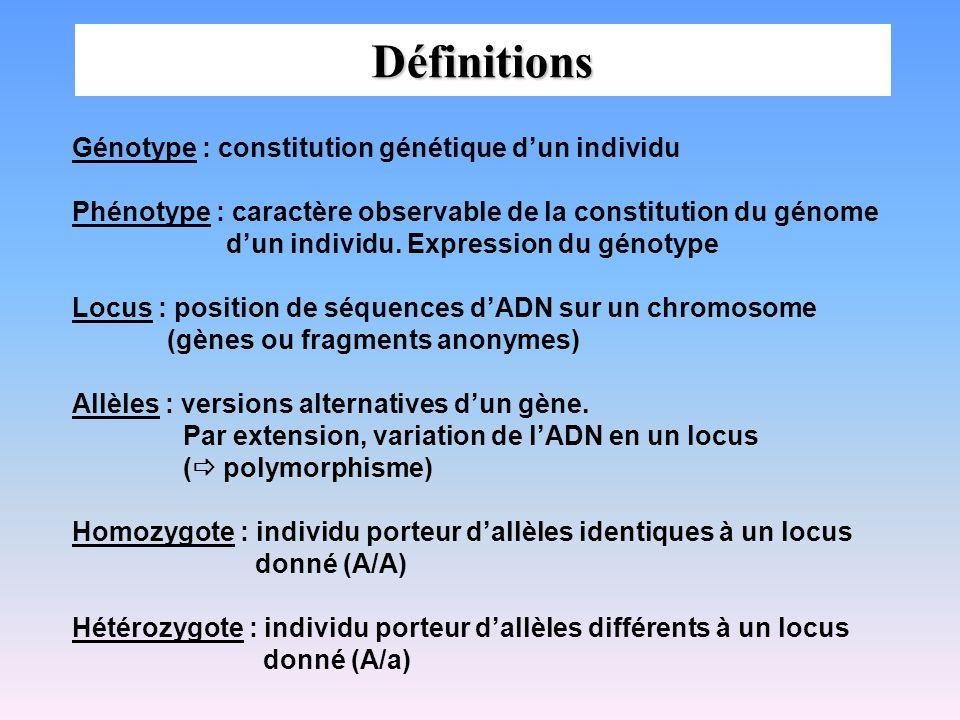 Définitions Génotype : constitution génétique dun individu Phénotype : caractère observable de la constitution du génome dun individu. Expression du g