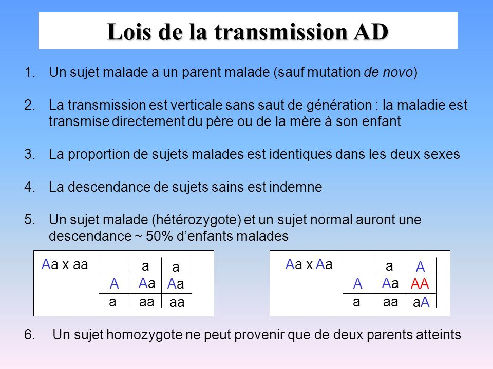 Le gène de la rousseur Transmission autosomique récessive pour la prédisposition à être roux Pénétrance incomplète Gène récepteur de la mélanocortine de type1 (MC1R) Dus à des variants de différents types de ce gène dont la fonction de signalisation est altérée Pénétrance dépend du variant : 3 variants de 0.79 Autre allèles pénétrance faible : 0.10 Hétérozygote : cheveux blonds