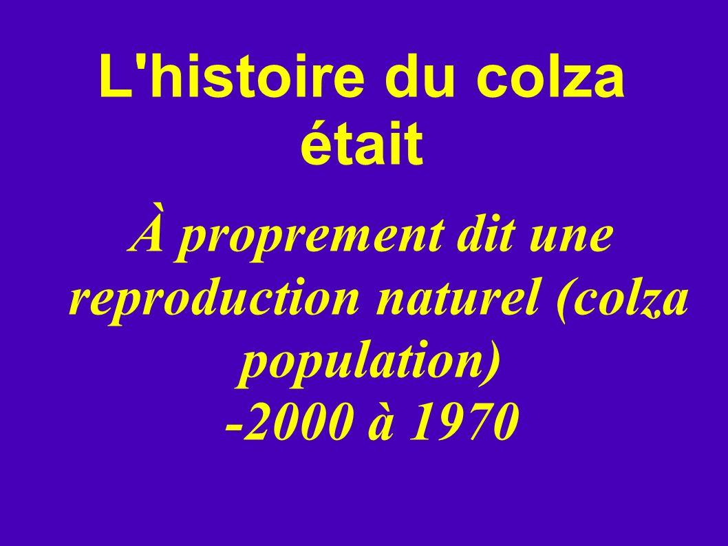 L'histoire du colza était À proprement dit une reproduction naturel (colza population) -2000 à 1970
