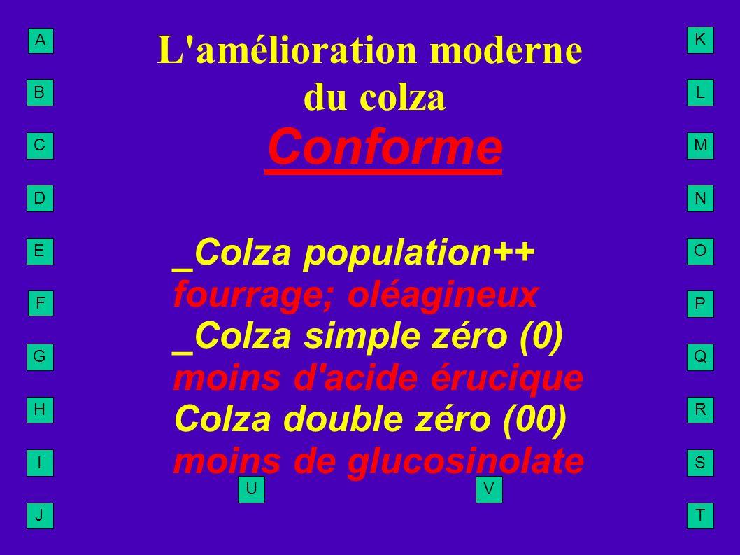 A B C D E F G H I J L M N O P Q R S T U K V L'amélioration moderne du colza Conforme _Colza population++ fourrage; oléagineux _Colza simple zéro (0) m