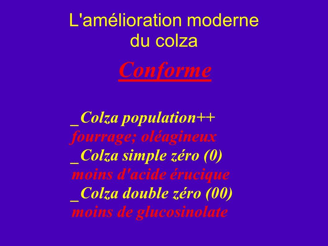 L'amélioration moderne du colza Conforme _Colza population++ fourrage; oléagineux _Colza simple zéro (0) moins d'acide érucique _Colza double zéro (00