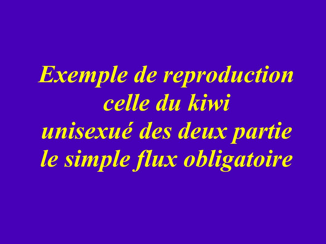Exemple de reproduction celle du kiwi unisexué des deux partie le simple flux obligatoire