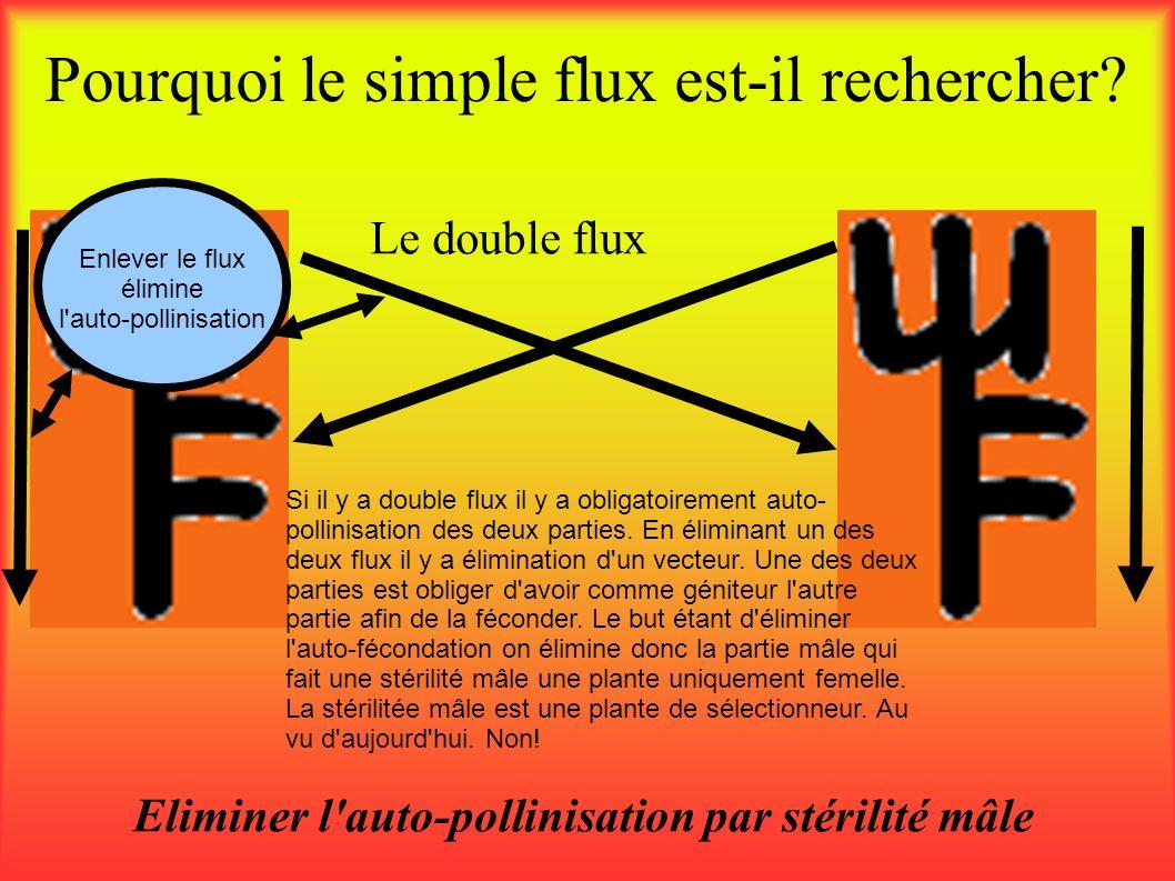 Pourquoi le simple flux est-il rechercher? Eliminer l'auto-pollinisation par stérilité mâle Le double flux Si il y a double flux il y a obligatoiremen
