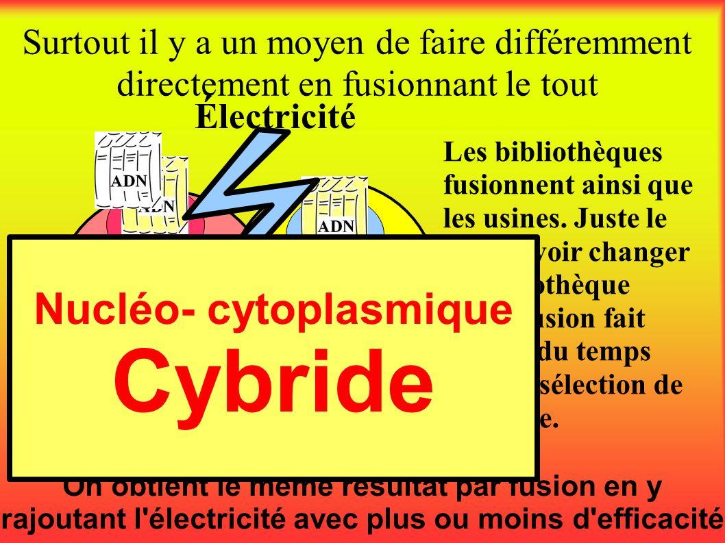 Surtout il y a un moyen de faire différemment directement en fusionnant le tout On obtient le même résultat par fusion en y rajoutant l'électricité av