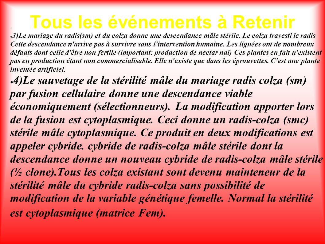 Tous les événements à Retenir. 3)Le mariage du radis(sm) et du colza donne une descendance mâle stérile. Le colza travesti le radis Cette descendance